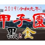 2019年(令和元年)甲子園モデルの硬式バットと硬式グローブ